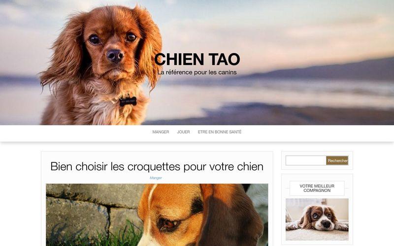 Top 10 des gros chiens - Chien Tao